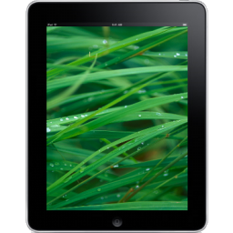 iPad Front Grass Background icon