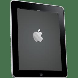 iPad Side Apple Logo icon