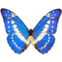 Morpho Cypres icon