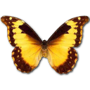 Morpho Diana icon