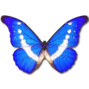 Morpho Helena icon