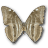 Morpho Adonis Huallega Bottom icon