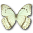 Morpho-Catenarius-Underside icon
