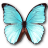 Morpho Menelaus Hubneri icon