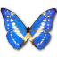 Morpho Cypres icon