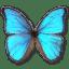 Morpho-Godarti icon