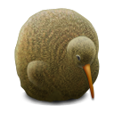 Kiwi Bird icon