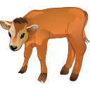 calf icon