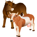 cattle icon
