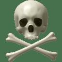 Skull and bones icon