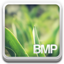 Bmp-file icon