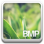 bmp file icon