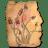Amanita lampionaria icon