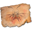 coleopterus persianatus icon