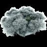 Snowy-Stone icon