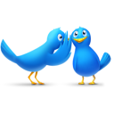 gossip birds icon