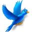 flying bird icon