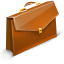 Case icon
