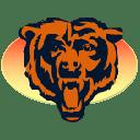 Bears icon