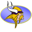 Vikings icon