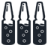 ampoules icon