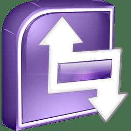 Infopath Icon | SoftDimension Iconset | Benjigarner