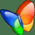MSN-exporer icon