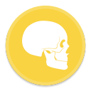 Anatomy icon