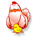 gallina icon