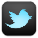 Twitter 4 icon