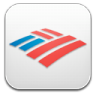 Bank-of-america icon
