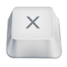 Letter-uppercase-X icon