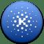 Kin icon