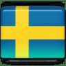 Sweden-Flag icon