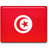 Tunisia-Flag icon