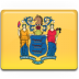 New-Jersey-Flag icon