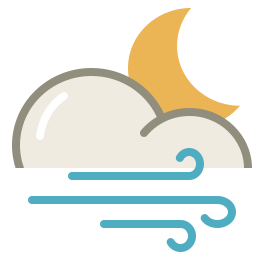 Wind night icon