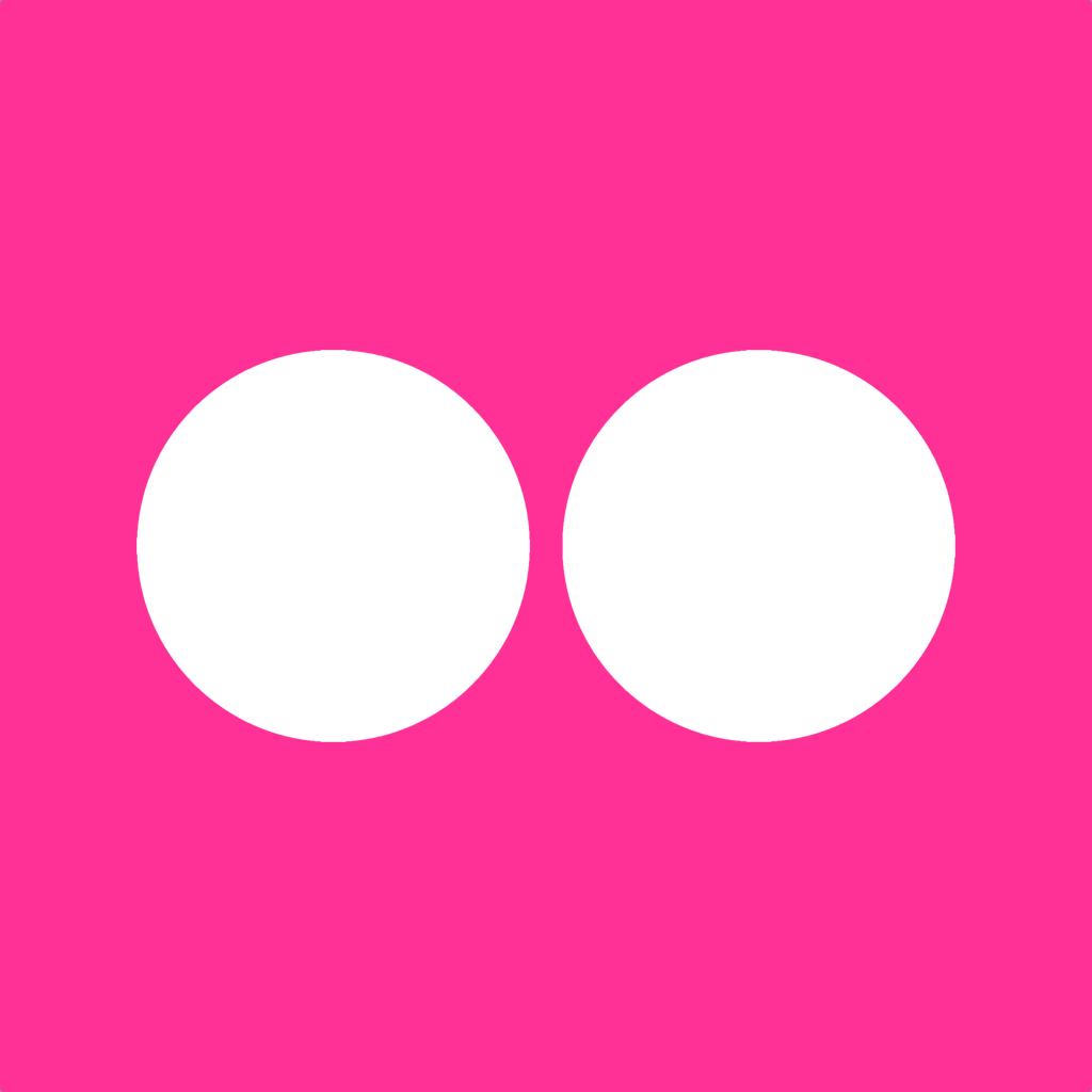 flickr icon simple iconset dan leech