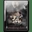 Twilight Breaking Dawn v2 icon