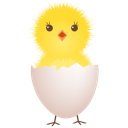 chicken egg shell icon