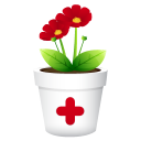 Plant-no-shadwo icon