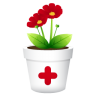 Plant-no-shadwo icon