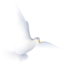 dove icon