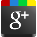 Image result for small icon google plus