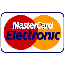 Master Card Electronic icon
