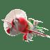 El-Chupacabra-Plane-2 icon