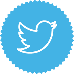 Twitter 2 icon