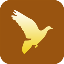 Christianity Peace Dove icon
