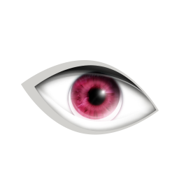 http://icons.iconarchive.com/icons/dooffy/cosmetic/256/11-eye-icon.png