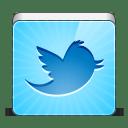 social twitter bird icon